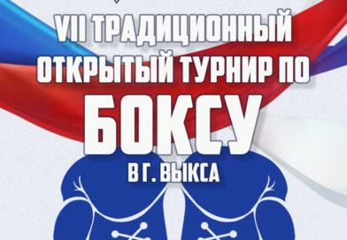 В Выксе пройдет VII традиционный открытый турнир по боксу
