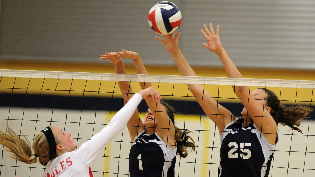 an analysis of the sport of volleyball in the sports history
