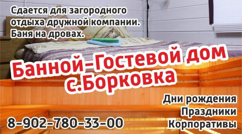 Банно-гостевой дом с. Борковка