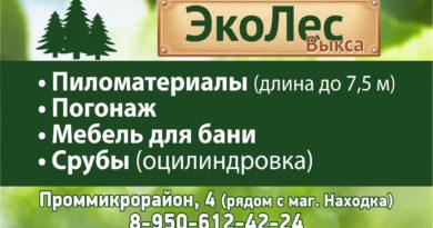 ЭкоЛес Выкса