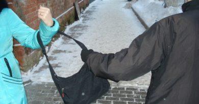 Выксунец напал на местную жительницу