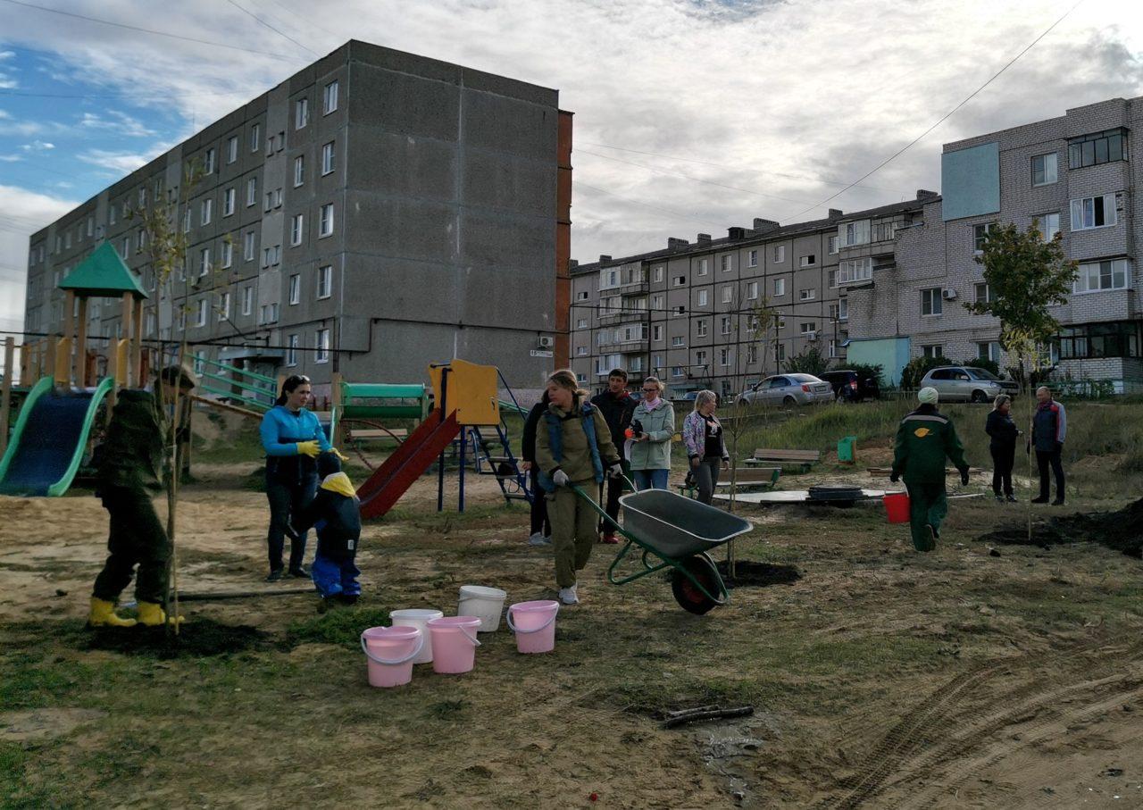 Дворы и детские площадки Выксы озеленили в рамках проекта «Чистый воздух»