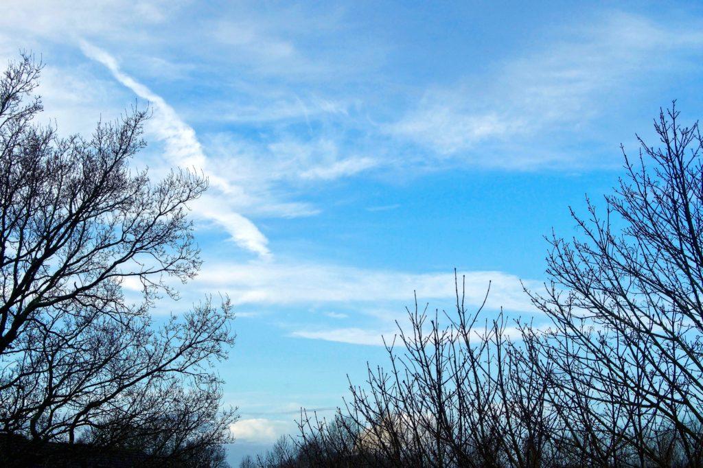 Сводные результаты контроля атмосферного воздуха в городском округе г. Выкса за ноябрь 2020 г.